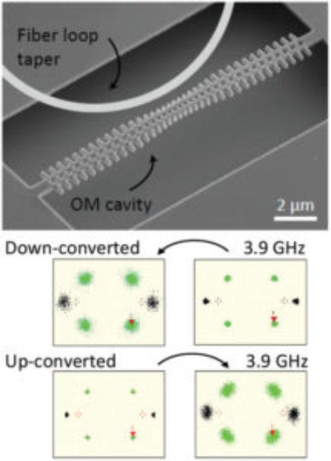 Bridging cavity optomechanics and wireless networks